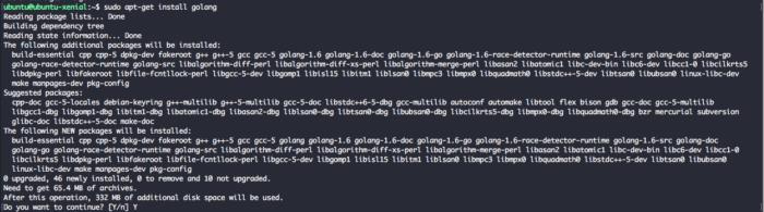 Install Golang Ubuntu 16.04