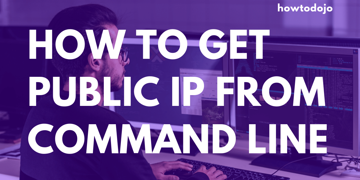 get public ip from command line